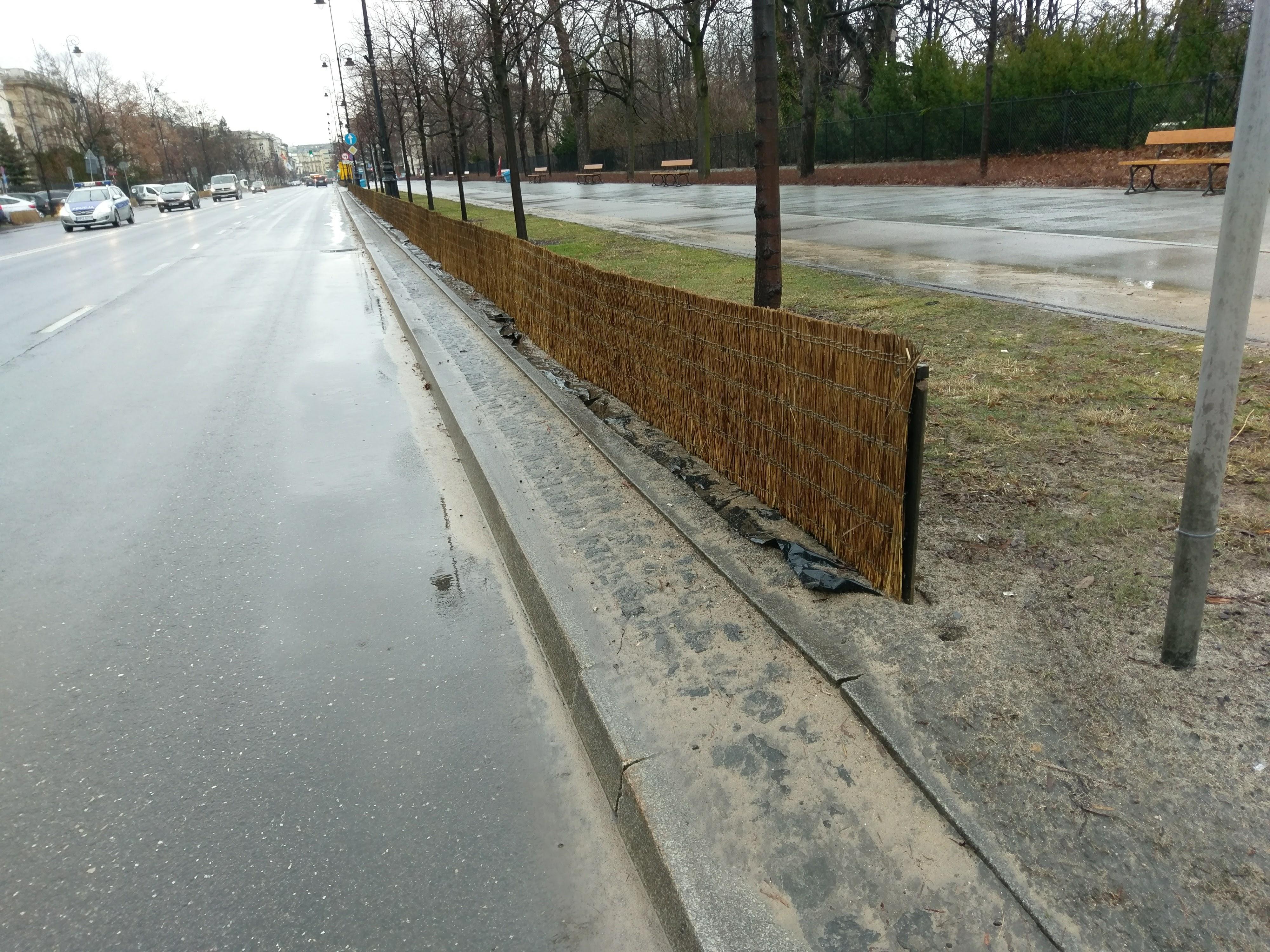 Koku aizsargi pret sāli Polijā.